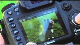 How to Shoot Slow Motion Video with the Canon EOS 7D(The Canon EOS 7D allows you to capture moments with still photos and HD video. AJ Vickery shows us how to use the slow motion video feature, perfect for ..., 2011-01-06T19:10:12.000Z)