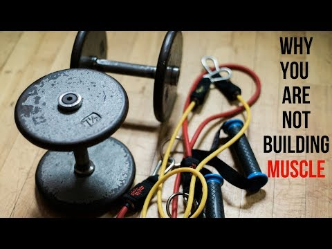 10 Reasons You Aren't Building Muscle | Kevin Kreider
