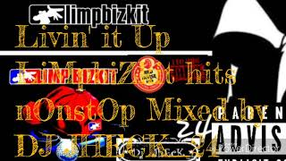 Gambar cover LiMpbiZkit hits (mUsic mixed by DJ jhecK24