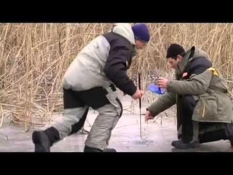 Русская Рыбалка. База Московская 2