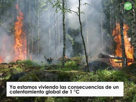 Prevención y políticas de desarrollo rural para luchar contra los incendios forestales