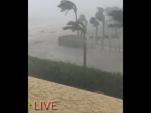 L@@K - HURRICANE IRMA Hammering Bonita Springs for last 46 minutes! ***Look for the birds***