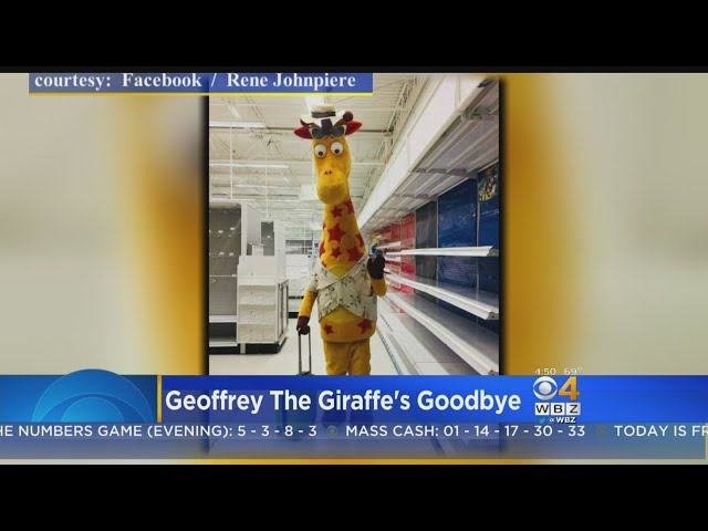 Last Toys R Us Stores Closing Friday