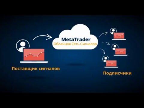 AMarkets - торговые сигналы на платформе MetaTrader 4