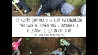 IC Domenico Bernardini - Scuole Primarie - Un Anno Insieme 2020