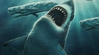 5 Facts About The World's Biggest Shark - Megalodon