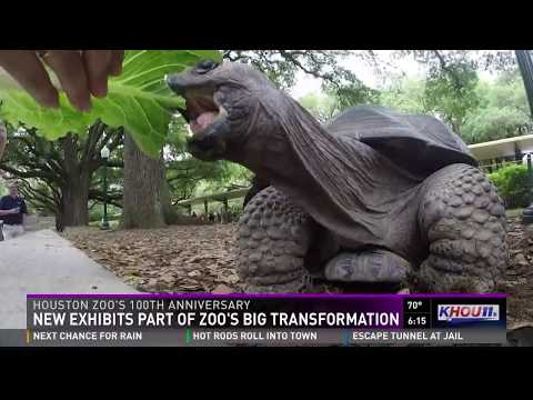 New exhibits part of Houston Zoo's big transformation