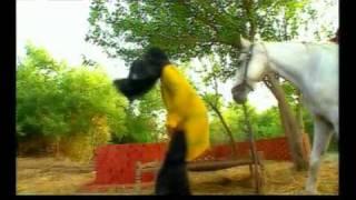 Satwinder Bugga - Hove Tutaan Wali Thandi Thandi.flv