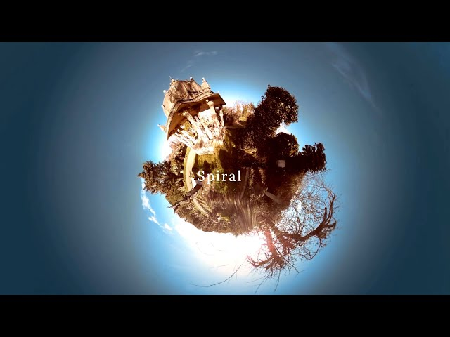 The Young Wait - 'Spiral'