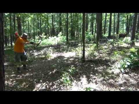 TRADITIONAL ARCHERY HOWARD HILL CLASSIC 2012 YouTube