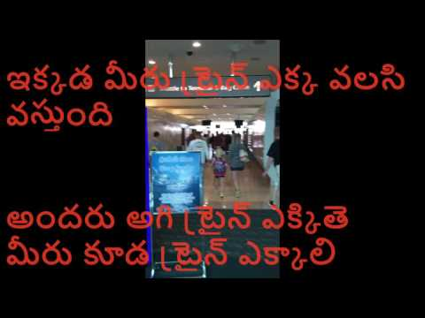 Reach bag claim or exit after getting down the plane (telugu)