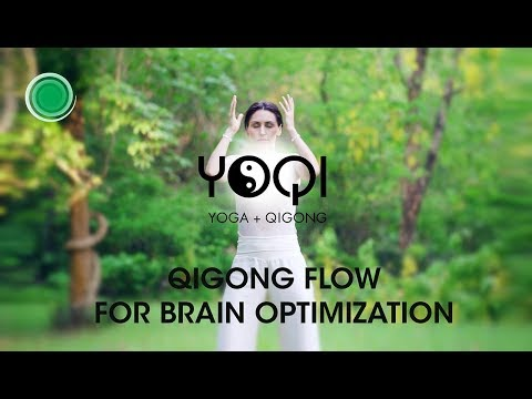 Qigong Flow For Brain Optimization