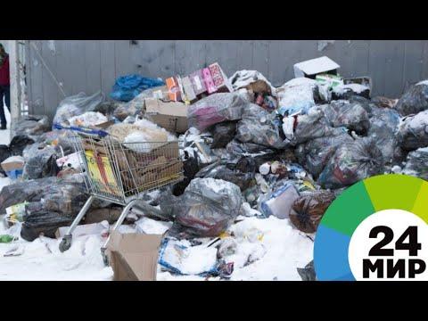 Штраф за мусор: в Тбилиси начали борьбу с хламом возле домов - МИР 24