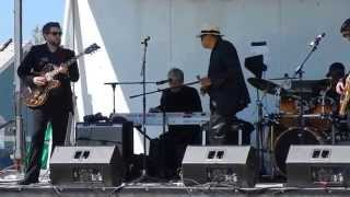 Billy Branch and the Sons of Blues - 2014 BBQ, Blues and Bluegrass Festival