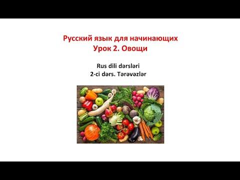 #Русский язык для начинающих #Урок #2