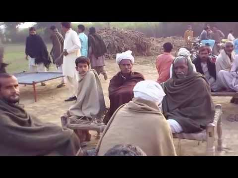 Chak 356 JB (Punjab) Pakistan
