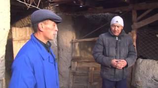 Кыргызстандыктар: Мал чарбачылыгы менен жан баккан Пазыловдордун үй-бүлөсү
