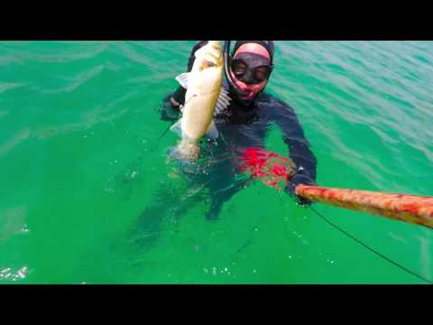 Gerard Charles - Short Clip - Sea Bass