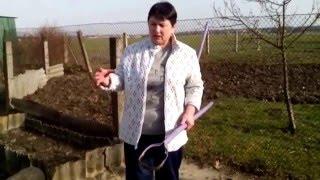видео Алыча гибридная » Садоводу, дачнику, огороднику.
