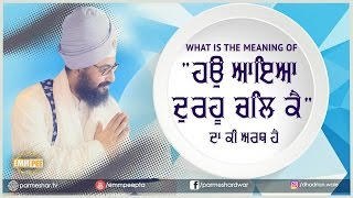5_4_2017 - What is the meaning of Hau - Bhullar Heri