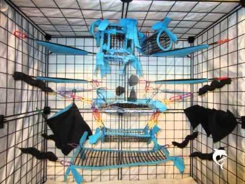 Gliders For Sale >> Sugar glider cage sets - YouTube