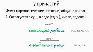 Признаки прилагательного у причастий (7 класс, видеоурок-презентация)