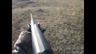 Коллективная охота на зайца ! +18 Анекдот для охотников #1(Привет всем охотникам !Пригласил меня мой знакомый на охоту в Николаев !Это моя первая охота в этой области..., 2016-01-04T09:07:45.000Z)