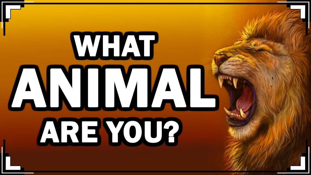 What Animal Are You Personality Test With Animals Youtube