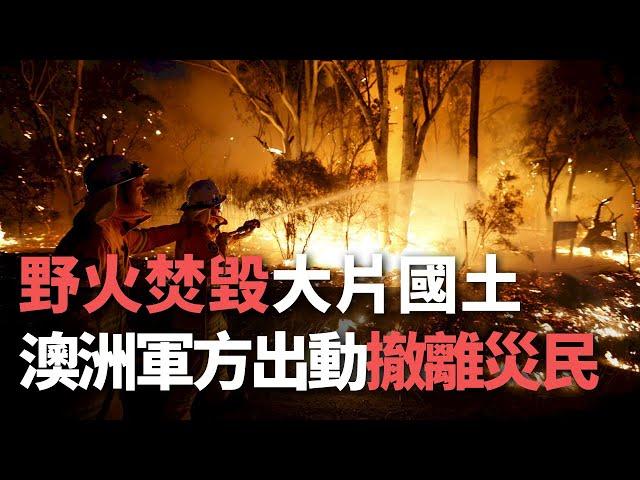 野火焚毀大片國土 澳洲軍方出動撤離災民【央廣國際新聞】