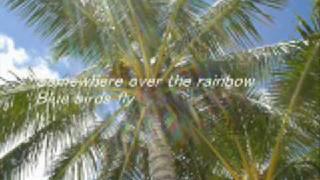 Israel Kamakawiwo'ole - Somewhere Over The Rainbow Lyrics