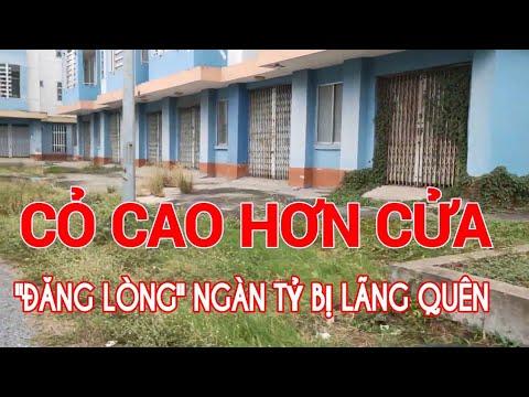 Dân xung quanh nhà Ổ CHUỘT- Chung cư NGÀN TỶ từ Ngân Sách lại lãng quên | Kenny Nguyen online