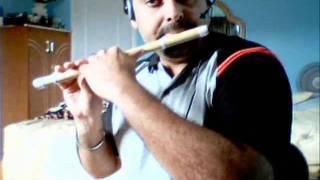 Tujhe Dekh Dekh Sona - Flute - Bansuri - Instrumental by D.Sethi