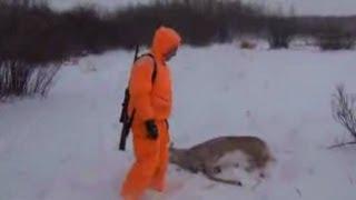 Осенняя охота на белохвостого оленя в Канаде видео