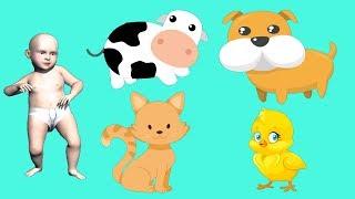 животные для детей умный ребенок - домашние животные с детским танцем