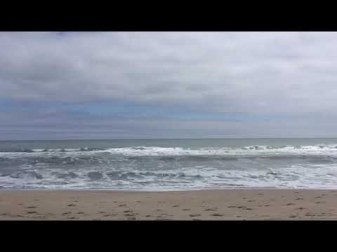 Video Of Fort Fisher Air Force Military, NC From Susan B.