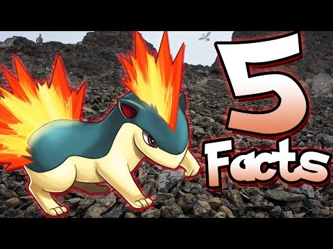 5 Facts About Quilava That You Might Not Know! (5 Facts) | Pokemon Facts