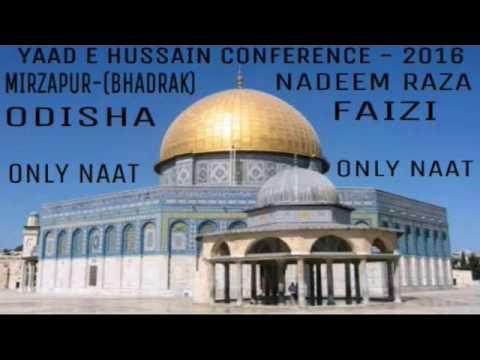 Nadeem Raza Faizi+Humse Mat Pucho Kya Kya+Yaad E Hussain Confrence Bhadrak-(Odisha)...2016
