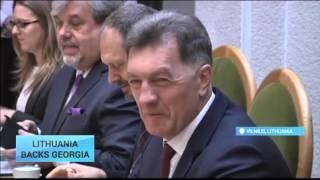 Georgia-Lithuania Summit: Georgia