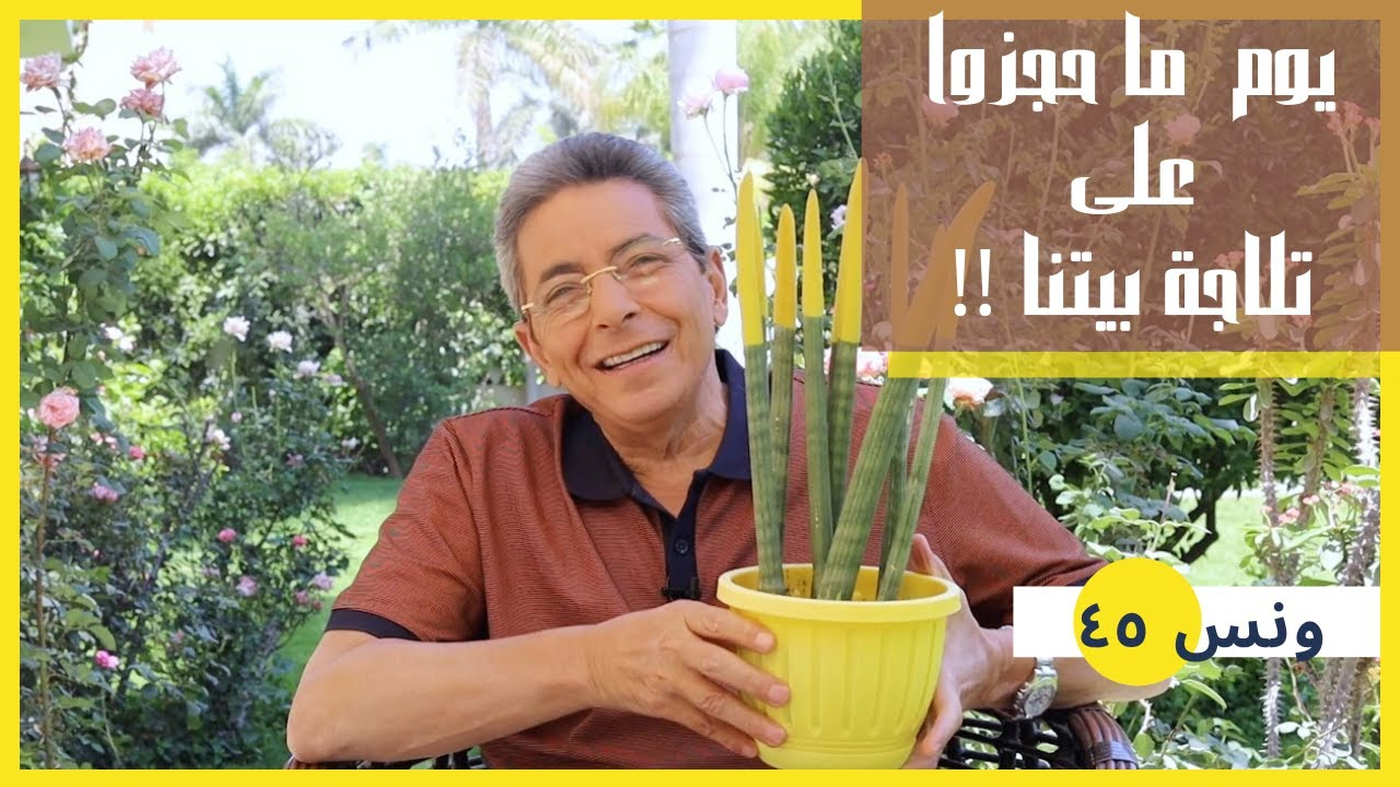 ونس  محمود سعد: يوم ما حجزوا على تلاجة بيتنا!! خلي بالك حفظ الحقوق مش بالقايمة بس! (٤٥