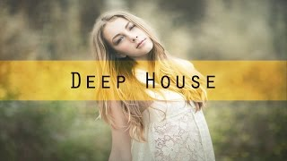 Download Pegasii - Vision (Radio Edit) [Deep House I Selected.] MP3 song and Music Video