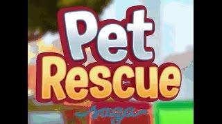 Pet Rescue Saga Level 903  NO BOOSTERS