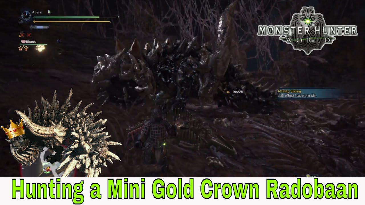 Monster Hunter World Mini Gold Crown Radobaan Hunting A Radobaan Youtube A gigantic brute wyvern that eats the bones of carcasses found in the rotten vale, using some of it as armor. monster hunter world mini gold crown radobaan hunting a radobaan