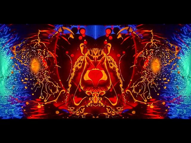 David Franz - To The Unknown (Mad Alchemy Album Visualizer)