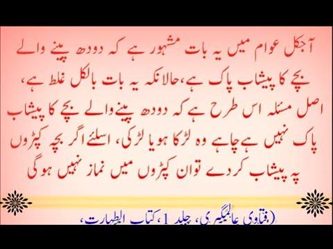 Hadees in Urdu Hadith Sunnah Bukhari Muslim Dawud Muwatta