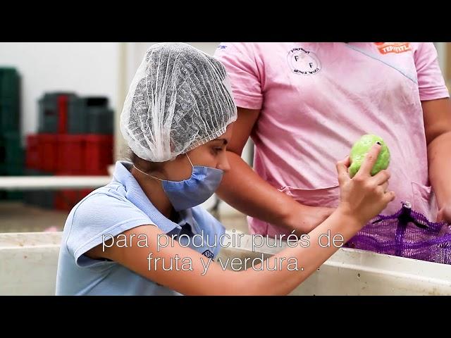 GiveOrg - México sin hambre