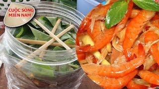 Làm mắm tôm chua miền tây (cách làm đầy đủ trong 1 tháng) #namviet