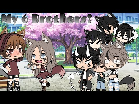My 6 Brothers