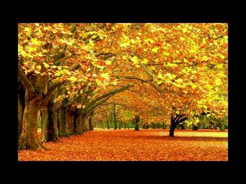 Времена года для детей (Осень)