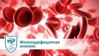 Железодефицитная анемия и продукция с пантогематогеном(Железодефицитная анемия и продукция с пантогематогеном. Продукция на основе пантогематогена: http://www.argo-shop.co..., 2015-09-19T18:28:47.000Z)