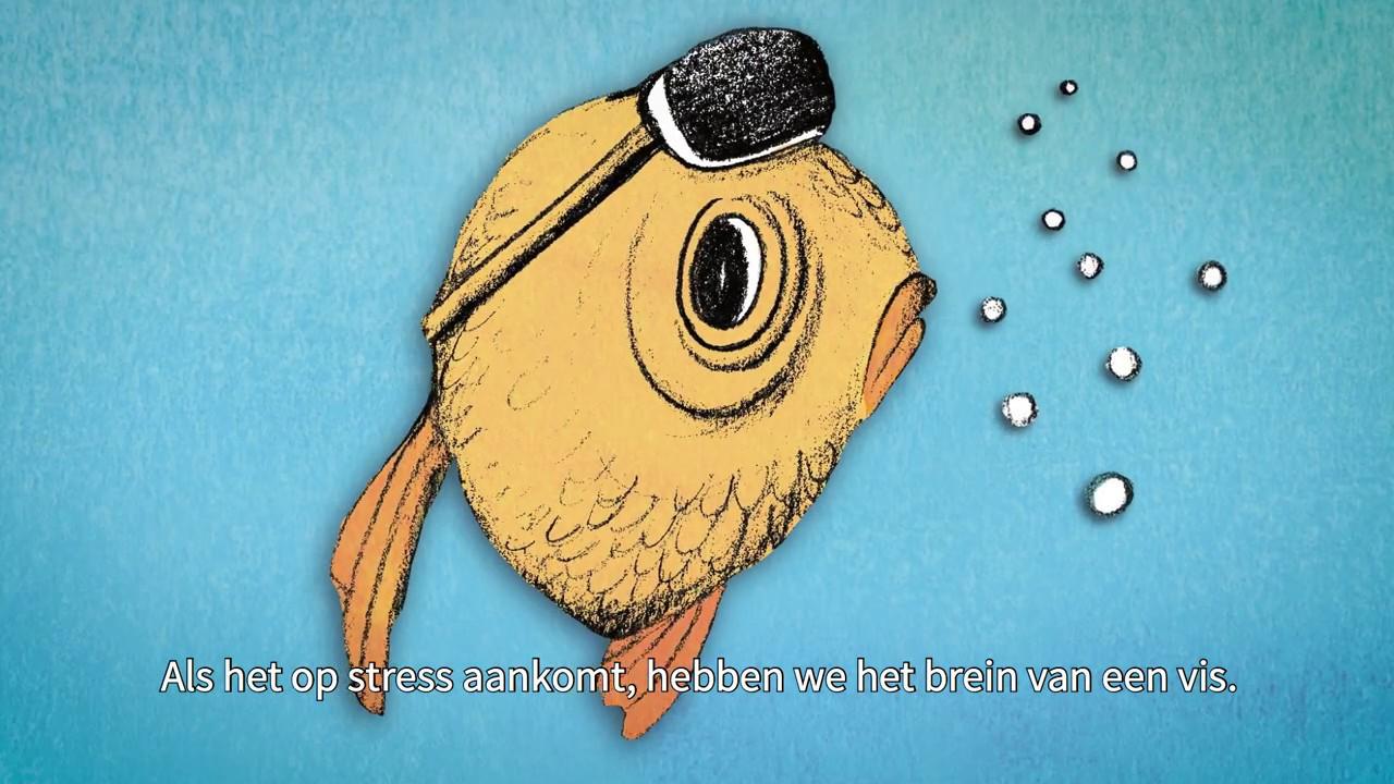 Bij stress zijn we net een vis